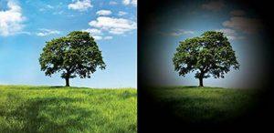 Demonstração da perda de visão periférica no glaucoma, que em casos avançados leva a perda total da visão.