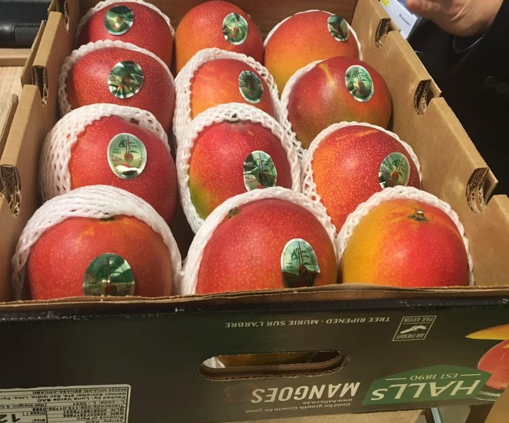 Foto de Frutas consumidas pelos paraenses ficaram mais caras no primeiro semestre, diz Dieese