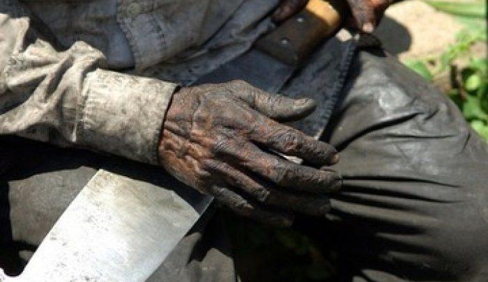 Foto de Pará: Vítimas de trabalho escravo são procuradas para receber indenização do governo