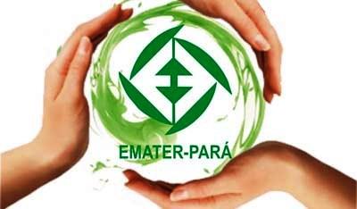 Photo of Emater completa 53 anos focada no desenvolvimento da agricultura familiar