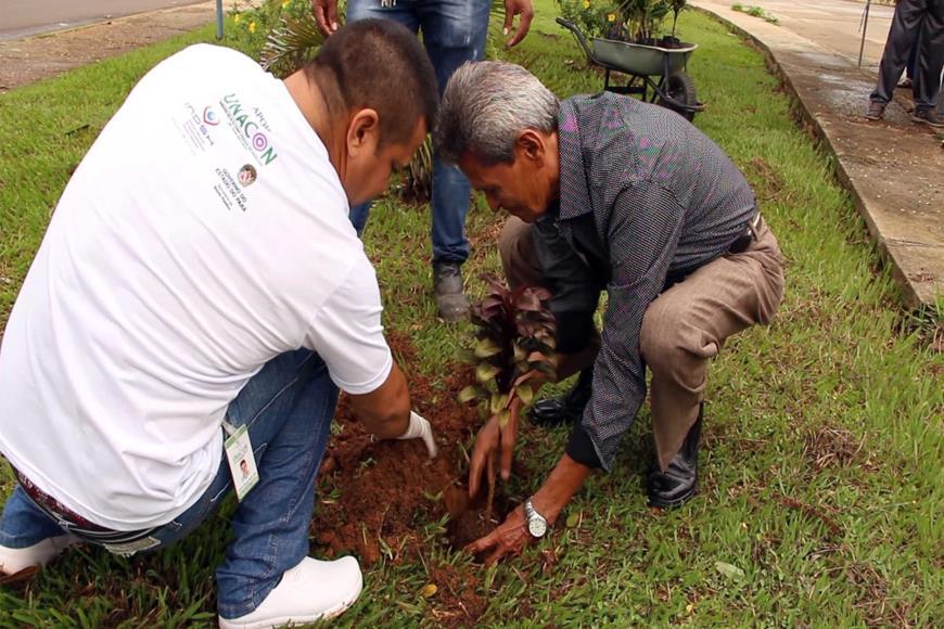 Foto de Pacientes superam o câncer e plantam árvores em homenagem à vida