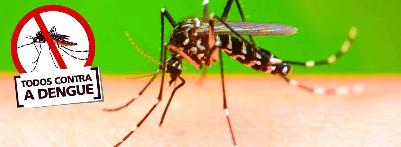 Foto de DENGUE MATA: Xinguara intensifica o Combate ao Aedes Aegypti e realiza mutirão de limpeza