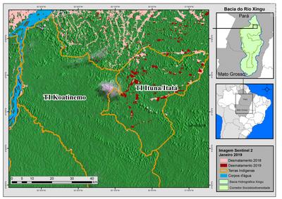 Foto de Invasões e desmatamento na terra indígena mais desmatada do Brasil preocupam Ibama e MPF, no Pará
