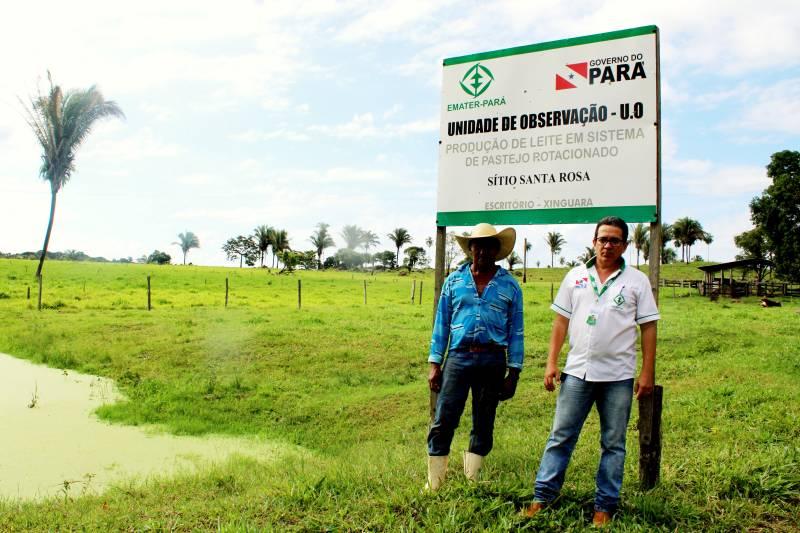 Foto de Emater de Xinguara implanta Unidade de Observação para pasto rotacionado
